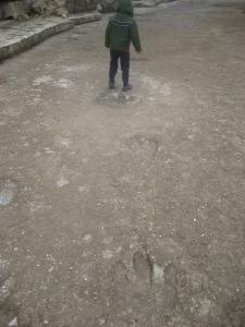 Leander Dino Tracks